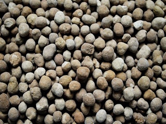Granugips® für den Weinbau
